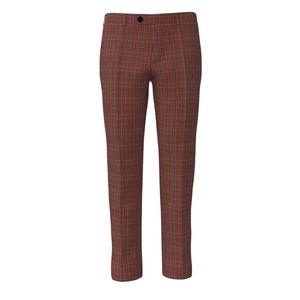 Pants Terra Check