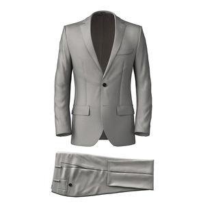 Anzug Authentisch Grau