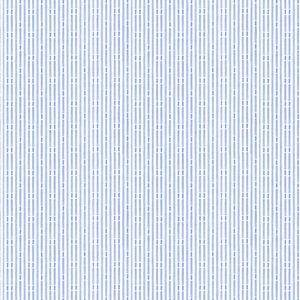 Camicia Azzurra Stripe Design