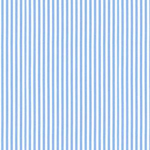 Camicia Azzurra a Righe
